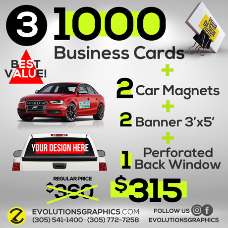 special 1000 business card, 2 car magnets, 2 banners 3'x5' perforated back window $199